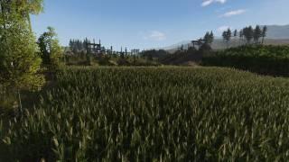 life-is-feudal-screenshot-12