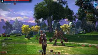 TOP 10 MMORPG May - TERA screenshots (18) copia_2