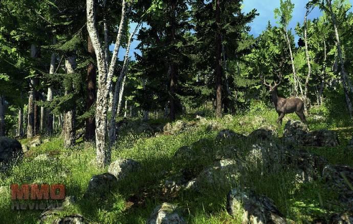 Imagenes de The Hunter